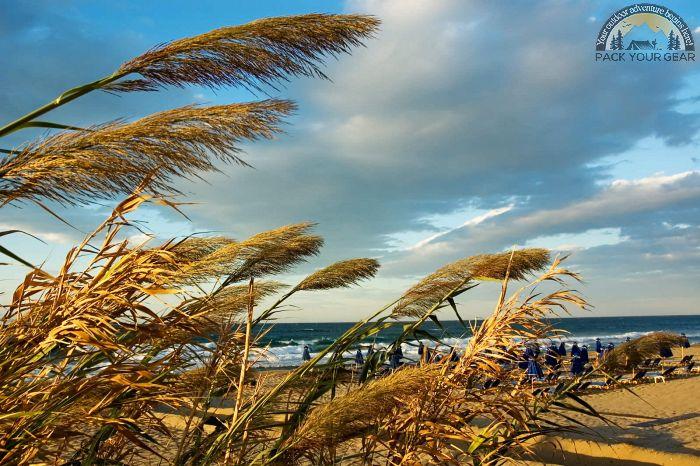 Windy Chilly Beach
