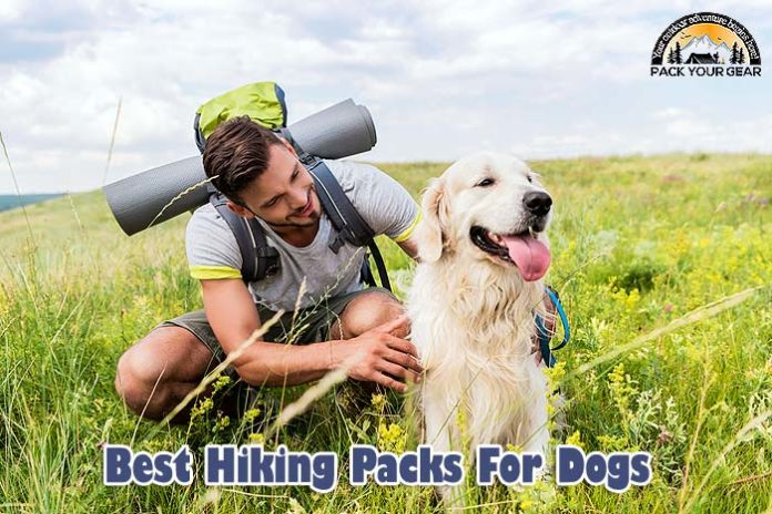 BEST Hiking Packs For Dogs