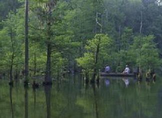 Choctaw National Wildlife Refuge