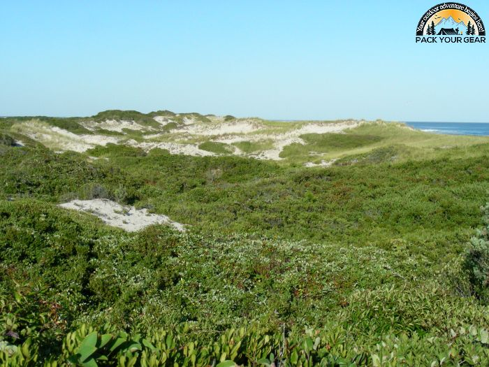 Fire Island National Seashore Wiki