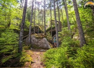 North Country National Scenic Trail
