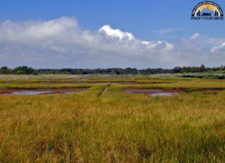 Seatuck National Wildlife Refuge