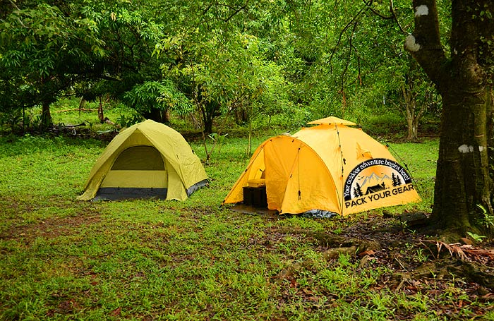 Walk-up Campsite Vs. Walk-in Campsite